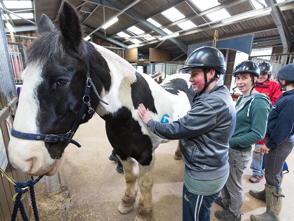 Four people stood next to, looking at and stroking a black and white horse in a riding stables
