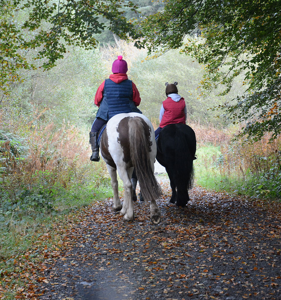 Two horses with one adult and one child rider travelling down a path, taken from behind