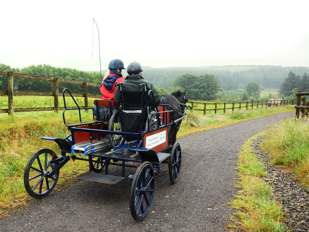 Rear view of wheelchair mounted on horse drawn carriage with chair user and stables activity instructor, driving down a path in the countryside