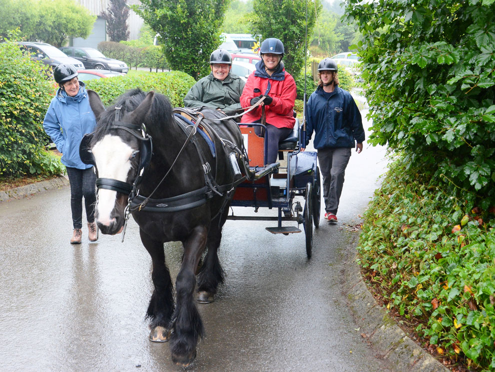 Black and white horse pulling a wheelchair accessible carriage along a path outside in the countryside, with two people on, two others including activity instructor walking beside, all smiling