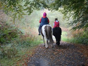 Rear view of two horses being ridden side by side in the countryside by adult female and female child