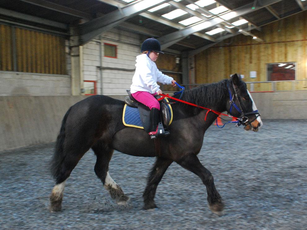 Female child riding a horse around an indoor arena menage