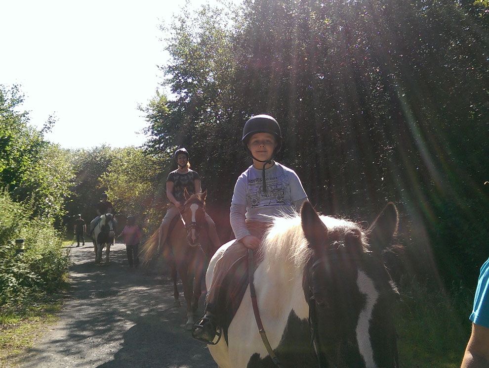 Line of horses and riders in the sun, smiling, riding down a country path