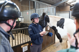 Instructor stood near a horse discussing with guests horse riding in a stable.