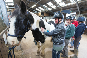 Guests petting a horse at Calvert Trust Exmoor.