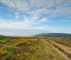 A rugged walking path going away from the camera on top of a hill, with a hill, fields and the sea in the distance