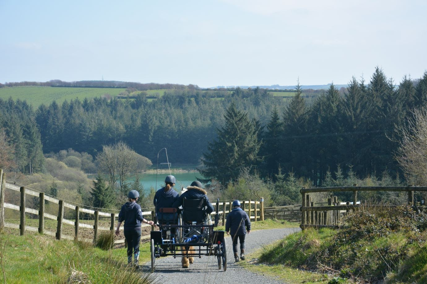 Guests enjoying a carriage ride